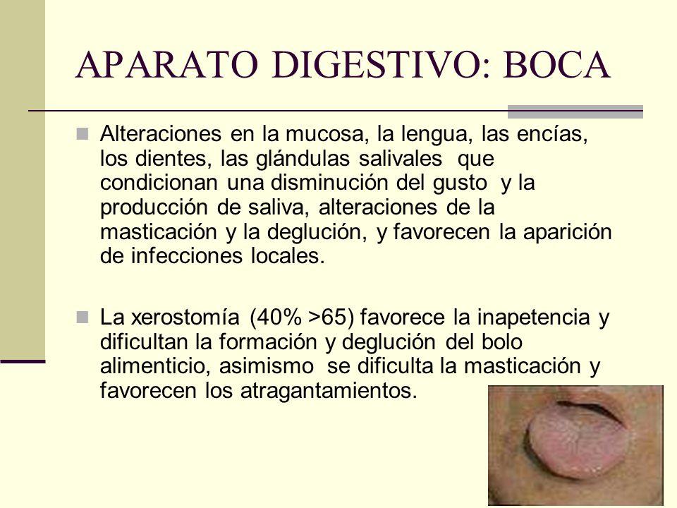 APARATO DIGESTIVO: BOCA Alteraciones en la mucosa, la lengua, las encías, los dientes, las glándulas salivales que condicionan una disminución del gus