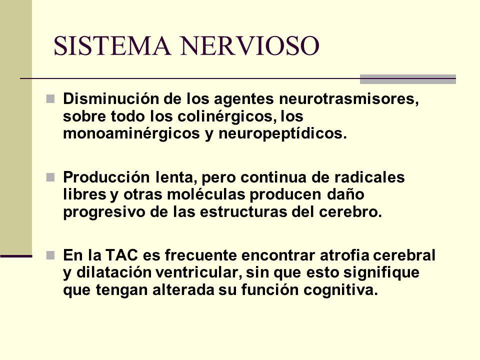 SISTEMA NERVIOSO Disminución de los agentes neurotrasmisores, sobre todo los colinérgicos, los monoaminérgicos y neuropeptídicos. Producción lenta, pe