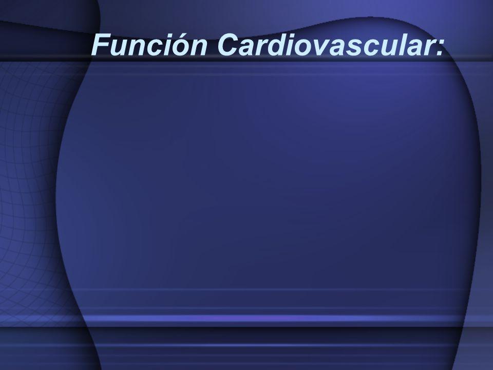 Función Cardiovascular: