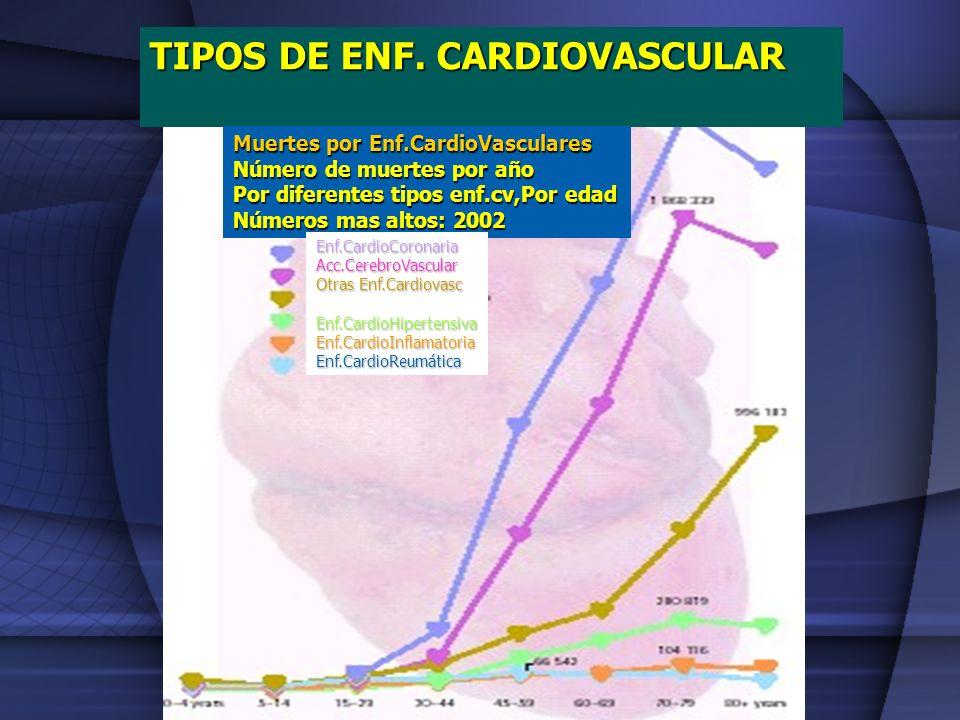 TIPOS DE ENF. CARDIOVASCULAR Muertes por Enf.CardioVasculares Número de muertes por año Por diferentes tipos enf.cv,Por edad Números mas altos: 2002 E