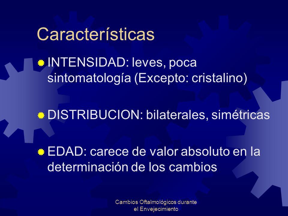 Cambios Oftalmológicos durante el Envejecimiento Características INTENSIDAD: leves, poca sintomatología (Excepto: cristalino) DISTRIBUCION: bilaterale