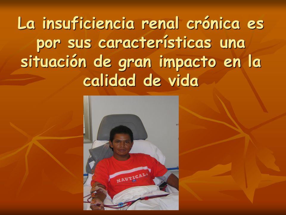 Calidad de vida y Transplante renal Desaparición de la anemia y de los trastornos del apetito.