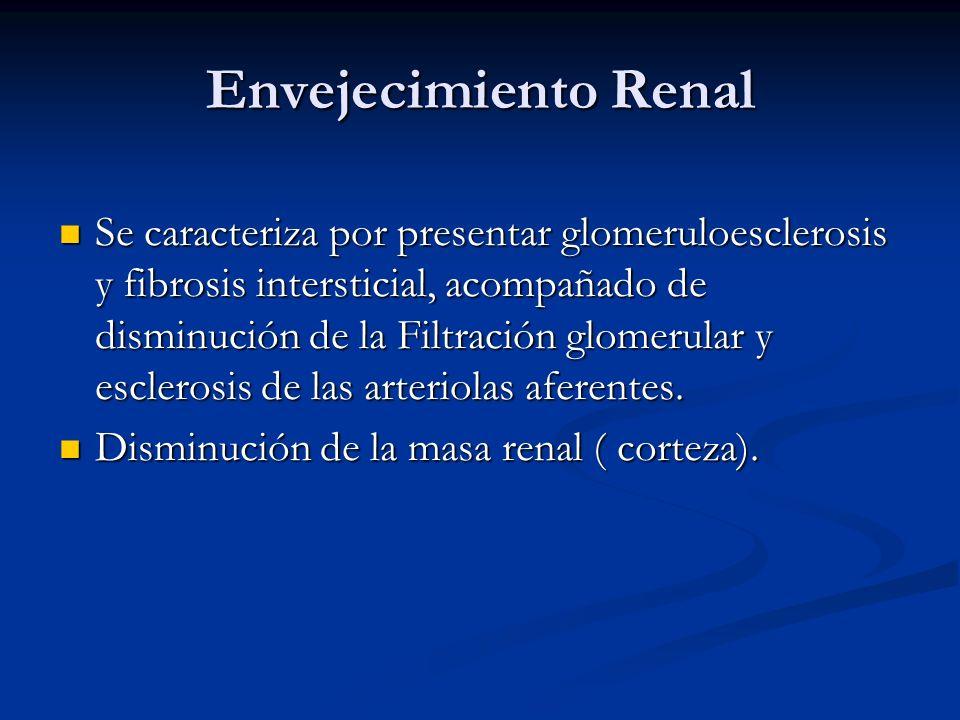 Envejecimiento Renal Se caracteriza por presentar glomeruloesclerosis y fibrosis intersticial, acompañado de disminución de la Filtración glomerular y