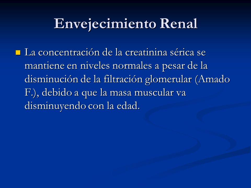 Envejecimiento Renal La concentración de la creatinina sérica se mantiene en niveles normales a pesar de la disminución de la filtración glomerular (A