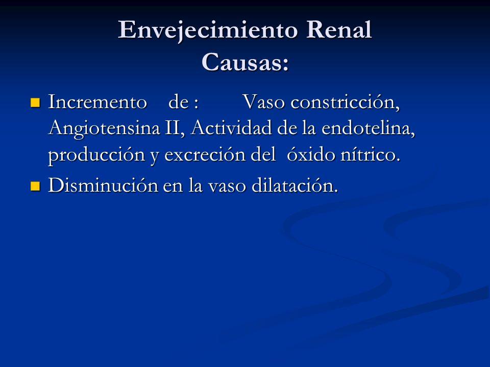 Envejecimiento Renal Causas: Incremento de : Vaso constricción, Angiotensina II, Actividad de la endotelina, producción y excreción del óxido nítrico.