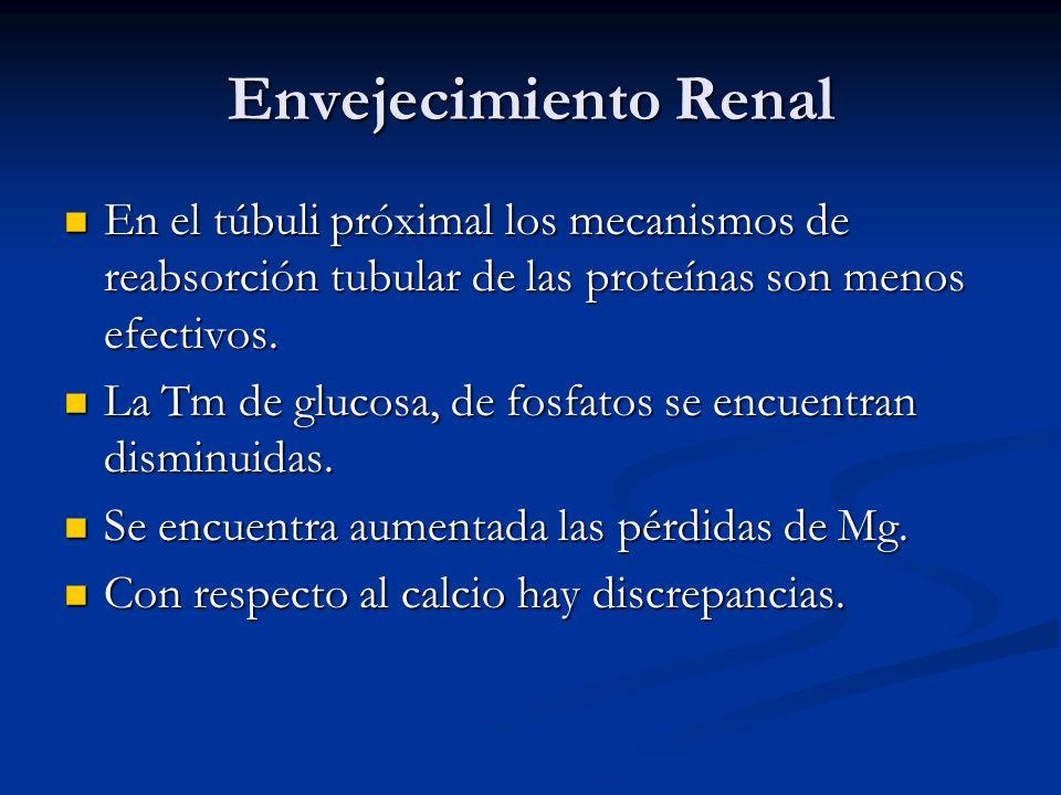Envejecimiento Renal En el túbuli próximal los mecanismos de reabsorción tubular de las proteínas son menos efectivos. En el túbuli próximal los mecan