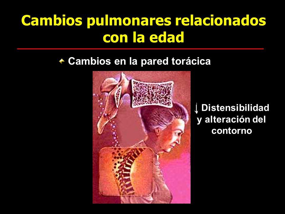 Cambios pulmonares relacionados con la edad Cambios en la pared torácica Distensibilidad y alteración del contorno