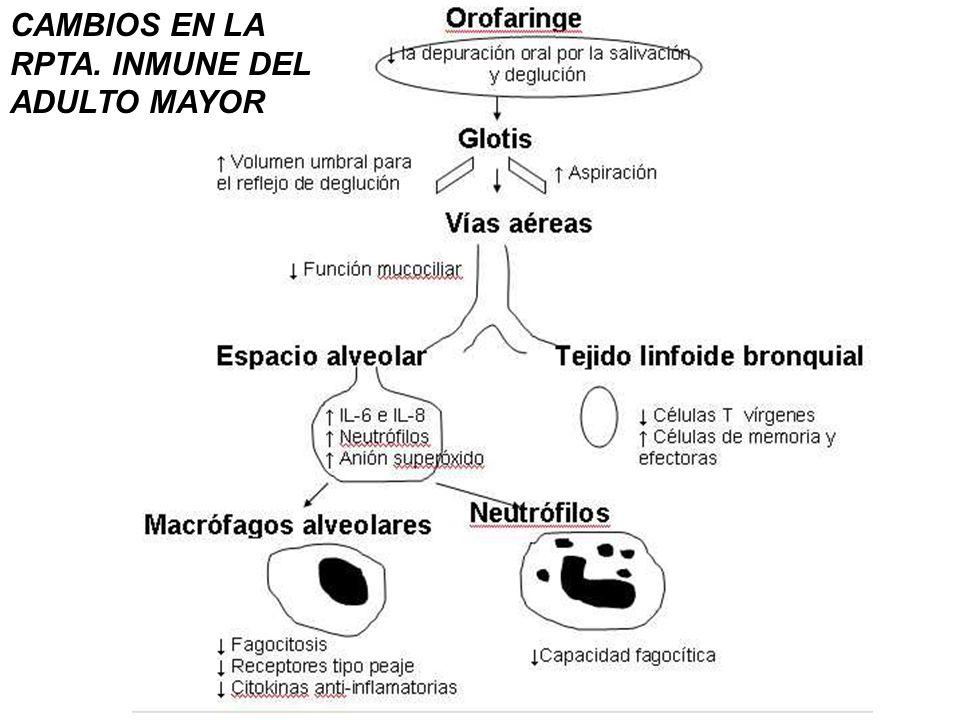 NAC - patogenia Agente infeccioso Huésped Ambiente