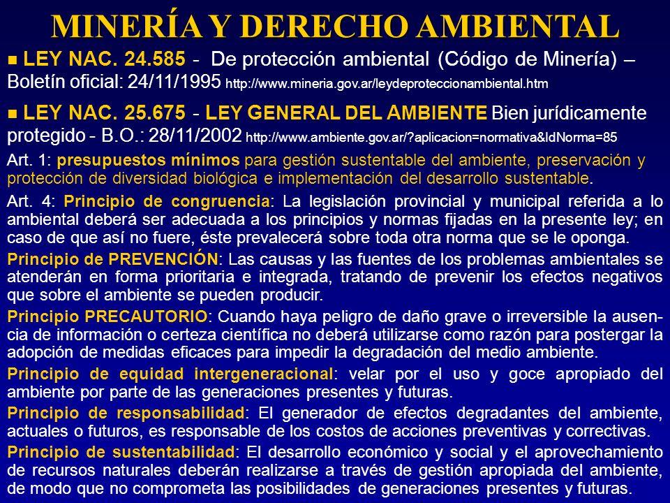 MINERÍA Y DERECHO AMBIENTAL LEY NAC. 24.585 - De protección ambiental (Código de Minería) – Boletín oficial: 24/11/1995 http://www.mineria.gov.ar/leyd
