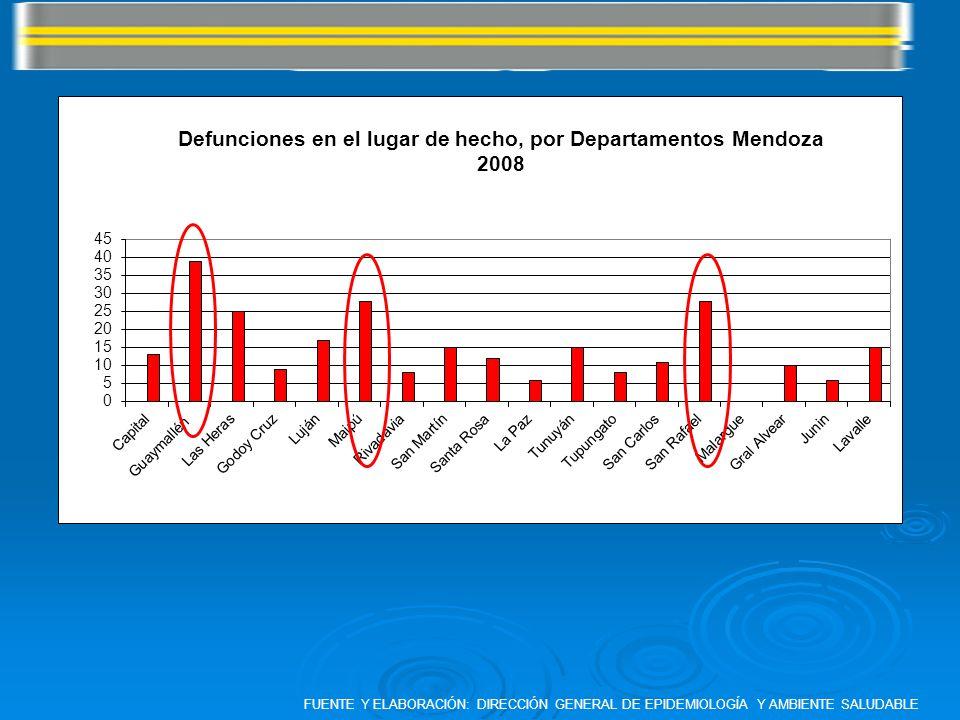FUENTE Y ELABORACIÓN: DIRECCIÓN GENERAL DE EPIDEMIOLOGÍA Y AMBIENTE SALUDABLE
