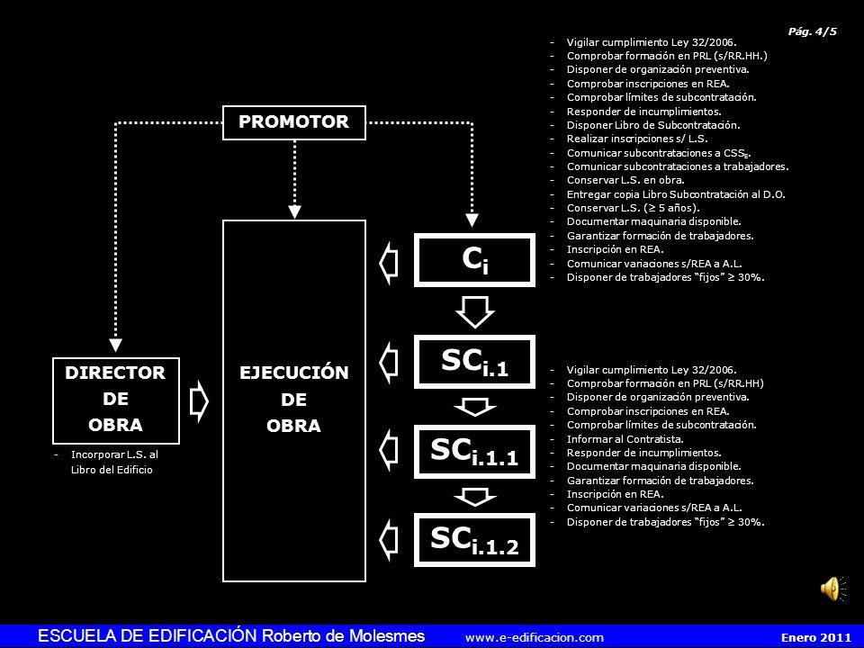 Pág.3/5 PROMOTOR -Disponer organización productiva propia.
