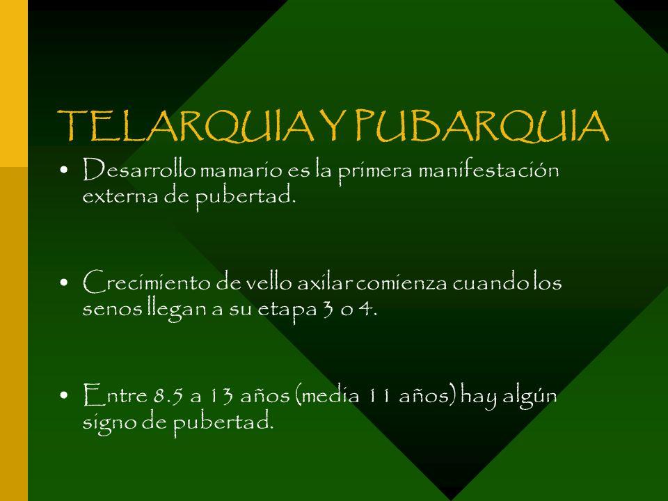 TELARQUIA Y PUBARQUIA Desarrollo mamario es la primera manifestación externa de pubertad. Crecimiento de vello axilar comienza cuando los senos llegan