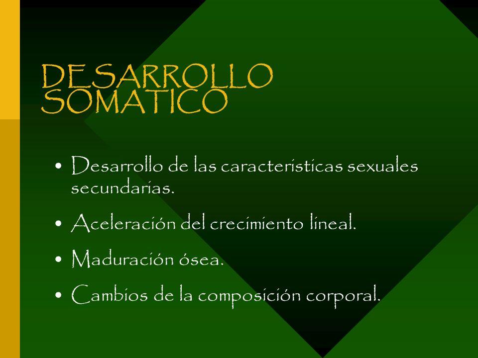 DESARROLLO SOMATICO Desarrollo de las caracteristicas sexuales secundarias. Aceleración del crecimiento lineal. Maduración ósea. Cambios de la composi