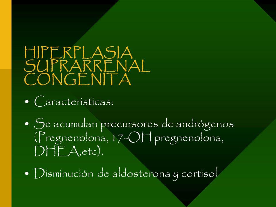 HIPERPLASIA SUPRARRENAL CONGENITA Caracteristicas: Se acumulan precursores de andrógenos (Pregnenolona, 17-OH pregnenolona, DHEA,etc). Disminución de