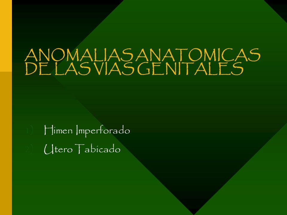 ANOMALIAS ANATOMICAS DE LAS VIAS GENITALES 1)Himen Imperforado 2)Utero Tabicado