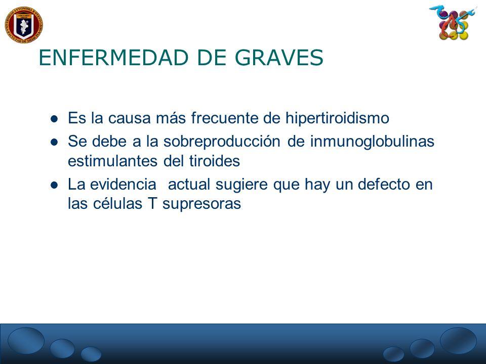 ENFERMEDAD DE GRAVES Es la causa más frecuente de hipertiroidismo Se debe a la sobreproducción de inmunoglobulinas estimulantes del tiroides La eviden