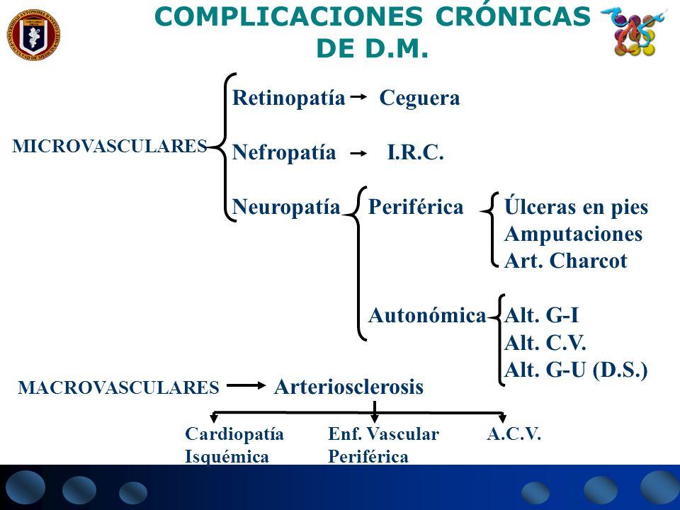 COMPLICACIONES CRÓNICAS DE D.M. MICROVASCULARES Retinopatía Ceguera Nefropatía I.R.C. NeuropatíaPeriféricaÚlceras en pies Amputaciones Art. Charcot Au