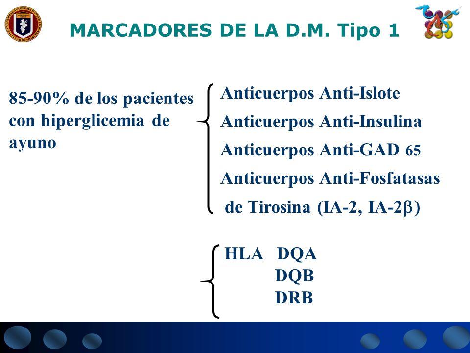 MARCADORES DE LA D.M. Tipo 1 85-90% de los pacientes con hiperglicemia de ayuno Anticuerpos Anti-Islote Anticuerpos Anti-Insulina Anticuerpos Anti-GAD