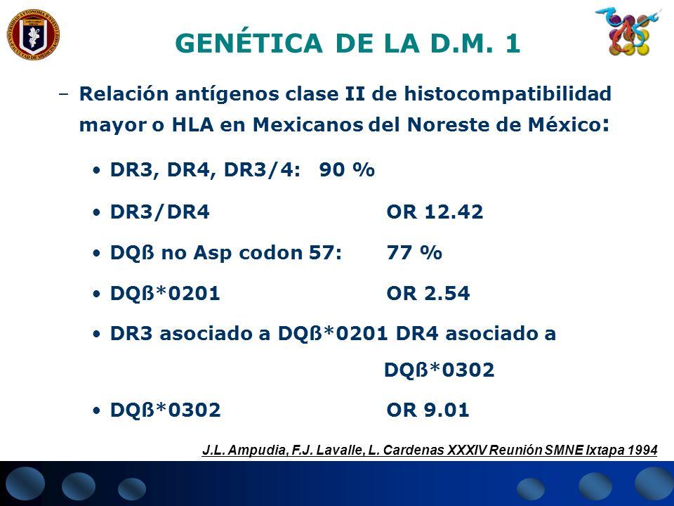 GENÉTICA DE LA D.M. 1 –Relación antígenos clase II de histocompatibilidad mayor o HLA en Mexicanos del Noreste de México : DR3, DR4, DR3/4:90 % DR3/DR