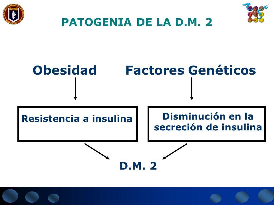 PATOGENIA DE LA D.M. 2 Obesidad Factores Genéticos Resistencia a insulina D.M. 2 Disminución en la secreción de insulina