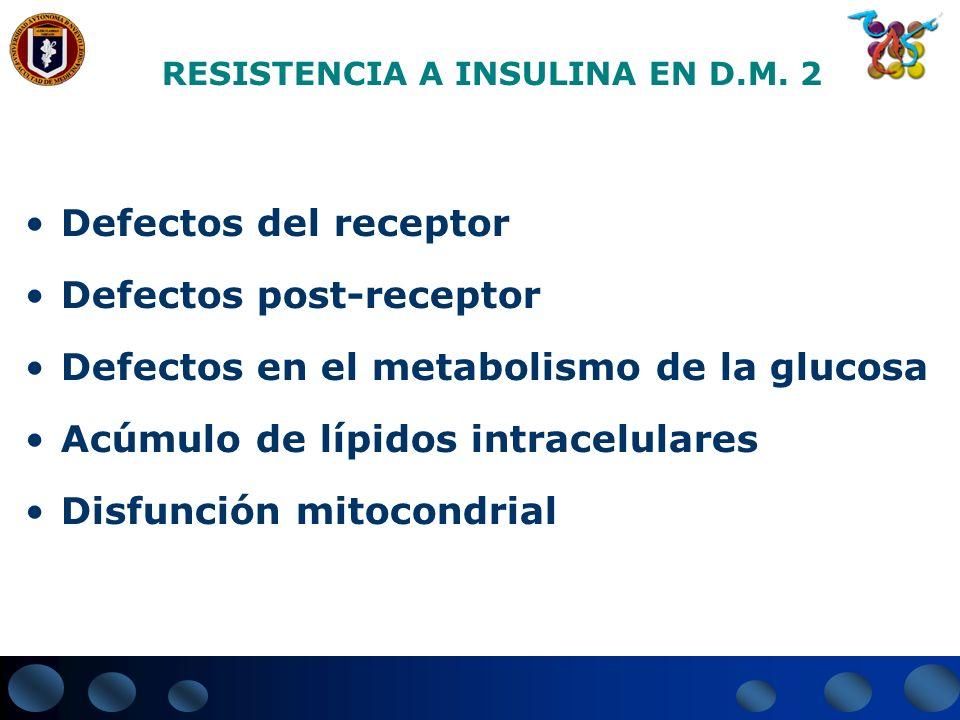 RESISTENCIA A INSULINA EN D.M. 2 Defectos del receptor Defectos post-receptor Defectos en el metabolismo de la glucosa Acúmulo de lípidos intracelular