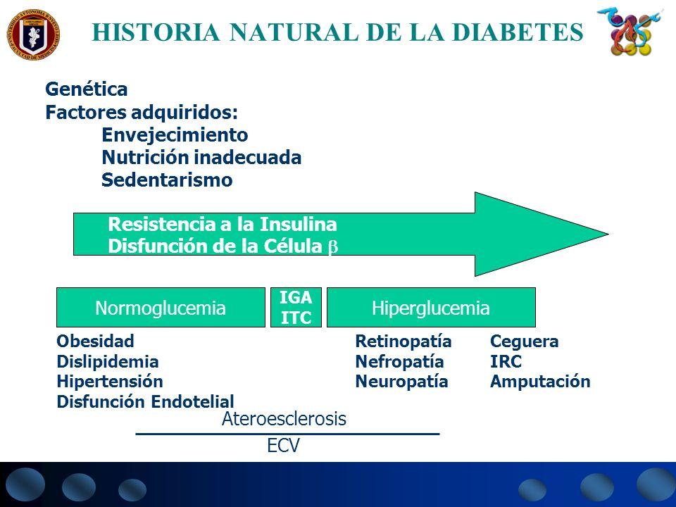 HISTORIA NATURAL DE LA DIABETES Genética Factores adquiridos: Envejecimiento Nutrición inadecuada Sedentarismo Obesidad Dislipidemia Hipertensión Disf