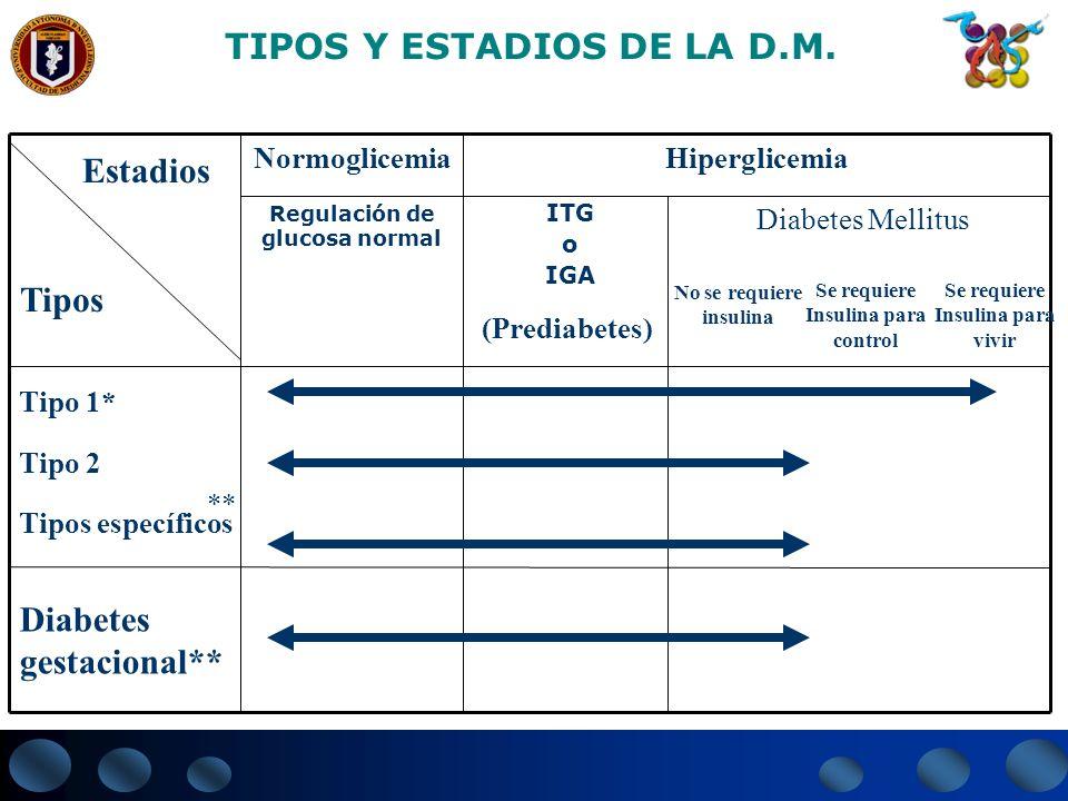 Diabetes gestacional** Tipo 1* Tipo 2 Tipos específicos Diabetes Mellitus ITG o IGA Regulación de glucosa normal HiperglicemiaNormoglicemia Estadios T