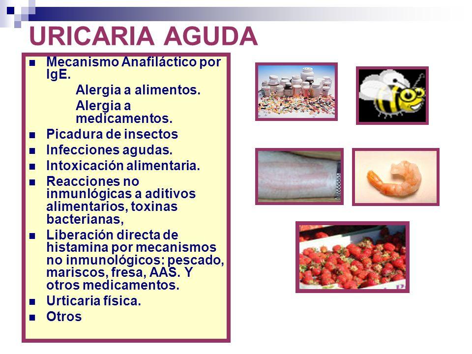 URICARIA AGUDA Mecanismo Anafiláctico por IgE. Alergia a alimentos. Alergia a medicamentos. Picadura de insectos Infecciones agudas. Intoxicación alim