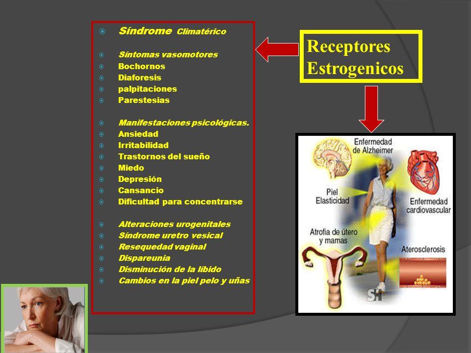 Síndrome Climatérico Síntomas vasomotores Bochornos Diaforesis palpitaciones Parestesias Manifestaciones psicológicas. Ansiedad Irritabilidad Trastorn