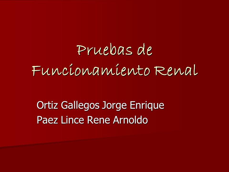 Pruebas de Funcionamiento Renal Ortiz Gallegos Jorge Enrique Paez Lince Rene Arnoldo