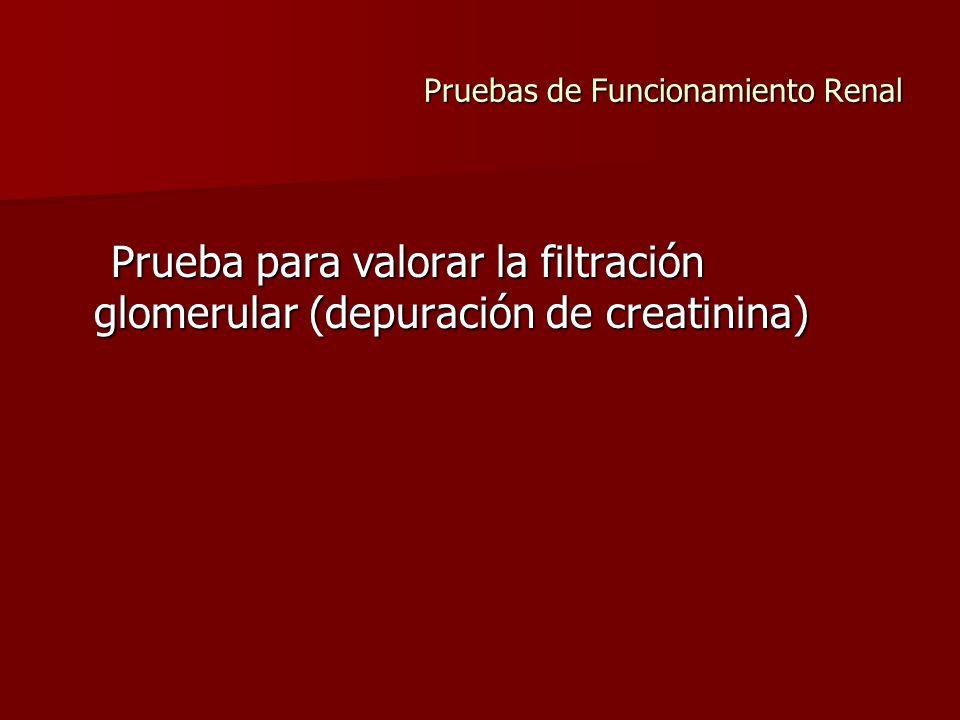 Pruebas de Funcionamiento Renal Prueba para valorar la filtración glomerular (depuración de creatinina) Prueba para valorar la filtración glomerular (