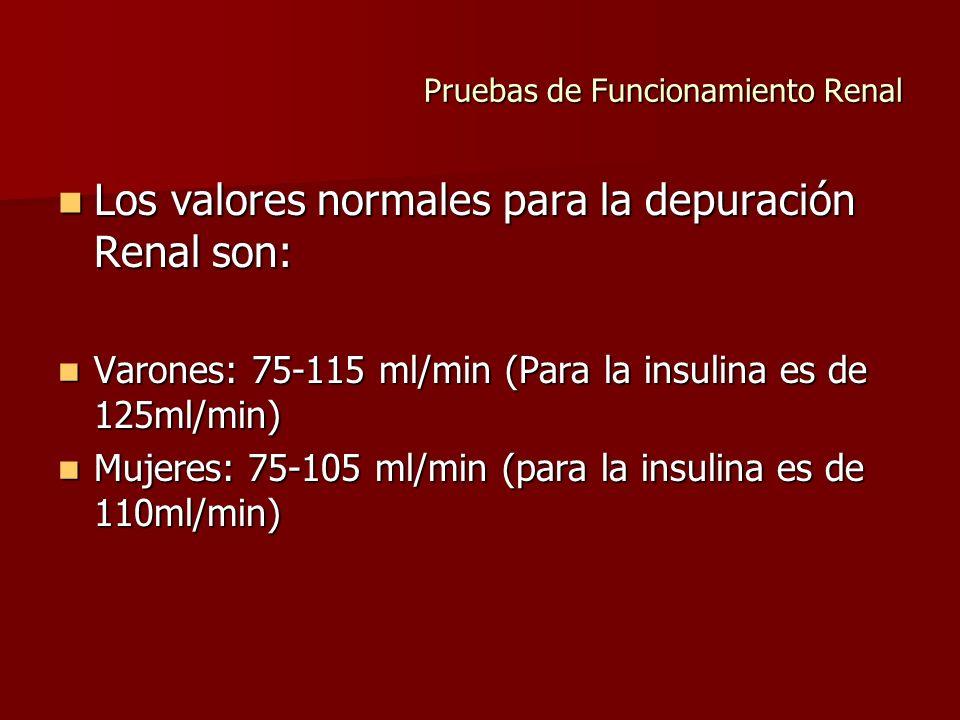 Pruebas de Funcionamiento Renal Los valores normales para la depuración Renal son: Los valores normales para la depuración Renal son: Varones: 75-115