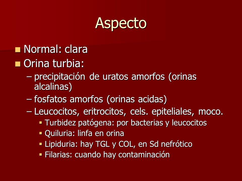 Aspecto Normal: clara Normal: clara Orina turbia: Orina turbia: –precipitación de uratos amorfos (orinas alcalinas) –fosfatos amorfos (orinas acidas)