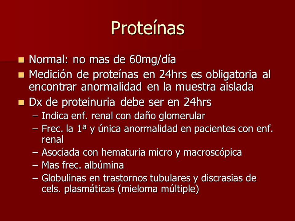 Proteínas Normal: no mas de 60mg/día Normal: no mas de 60mg/día Medición de proteínas en 24hrs es obligatoria al encontrar anormalidad en la muestra a