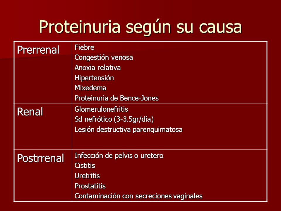 Proteinuria según su causa PrerrenalFiebre Congestión venosa Anoxia relativa HipertensiónMixedema Proteinuria de Bence-Jones RenalGlomerulonefritis Sd
