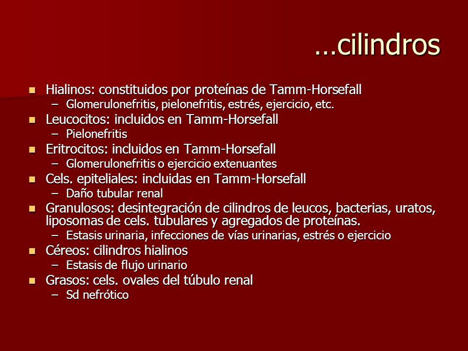 …cilindros Hialinos: constituidos por proteínas de Tamm-Horsefall Hialinos: constituidos por proteínas de Tamm-Horsefall –Glomerulonefritis, pielonefr