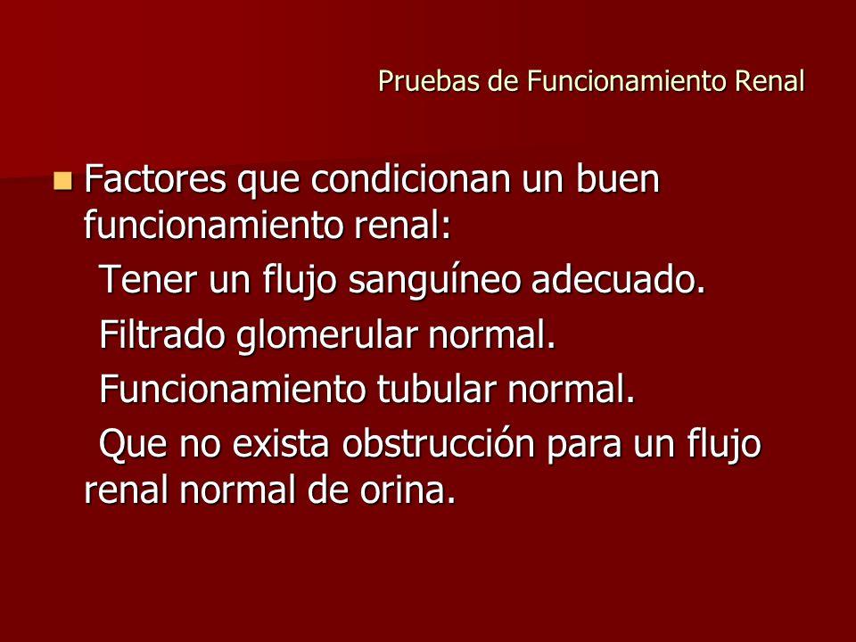 Pruebas de Funcionamiento Renal Factores que condicionan un buen funcionamiento renal: Factores que condicionan un buen funcionamiento renal: Tener un
