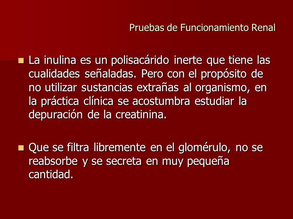 Pruebas de Funcionamiento Renal La inulina es un polisacárido inerte que tiene las cualidades señaladas. Pero con el propósito de no utilizar sustanci