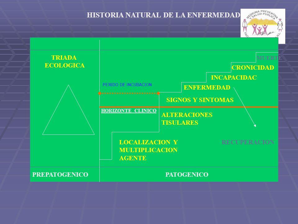 PREPATOGENICOPATOGENICO TRIADA ECOLOGICA LOCALIZACION Y MULTIPLICACION AGENTE ALTERACIONES TISULARES SIGNOS Y SINTOMAS ENFERMEDAD INCAPACIDAC CRONICIDAD MUERTE RECUPERACION HORIZONTE CLINICO HISTORIA NATURAL DE LA ENFERMEDAD PERIDO DE INCUBACION