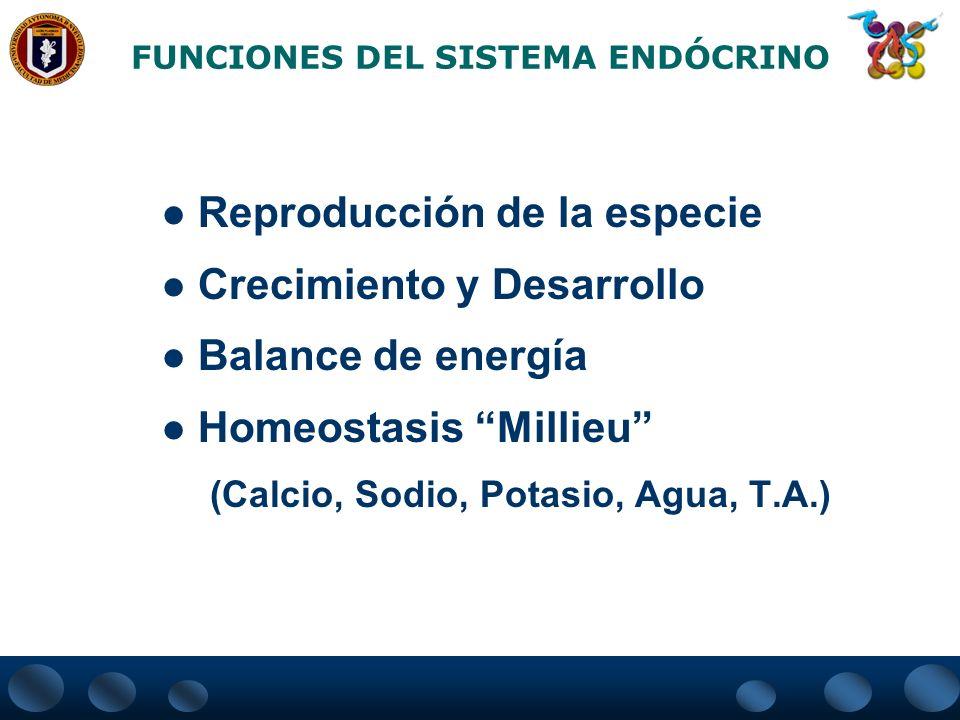 FUNCIONES DEL SISTEMA ENDÓCRINO Reproducción de la especie Crecimiento y Desarrollo Balance de energía Homeostasis Millieu (Calcio, Sodio, Potasio, Ag