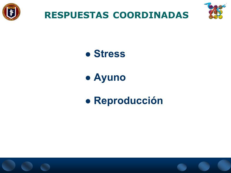RESPUESTAS COORDINADAS Stress Ayuno Reproducción
