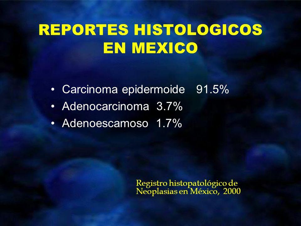 REPORTES HISTOLOGICOS EN MEXICO Carcinoma epidermoide 91.5% Adenocarcinoma 3.7% Adenoescamoso 1.7% Registro histopatológico de Neoplasias en México, 2