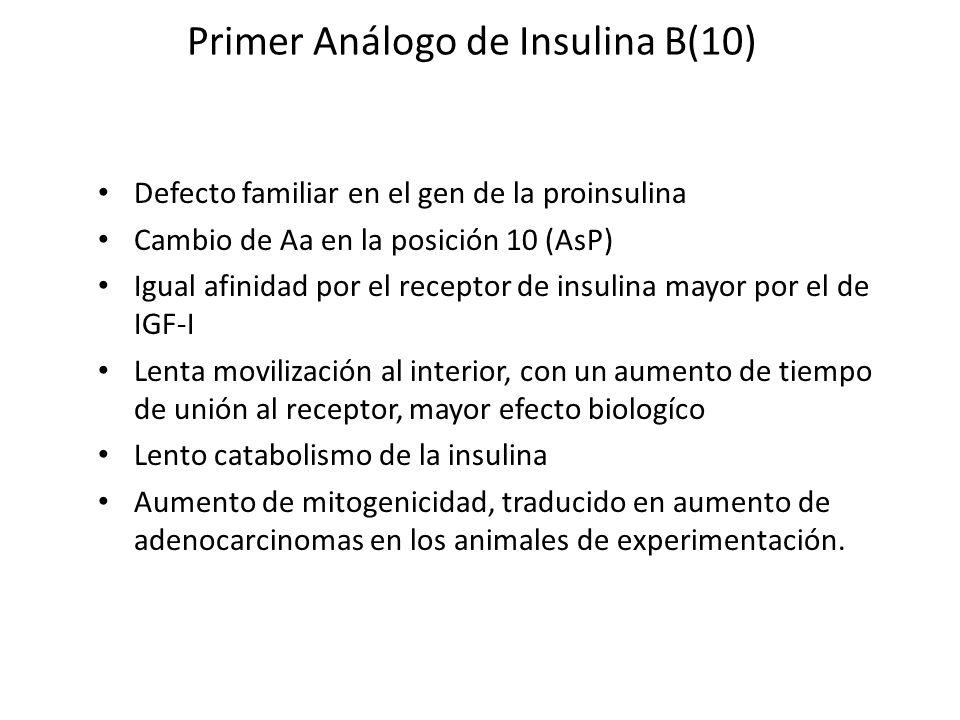 Primer Análogo de Insulina B(10) Defecto familiar en el gen de la proinsulina Cambio de Aa en la posición 10 (AsP) Igual afinidad por el receptor de i