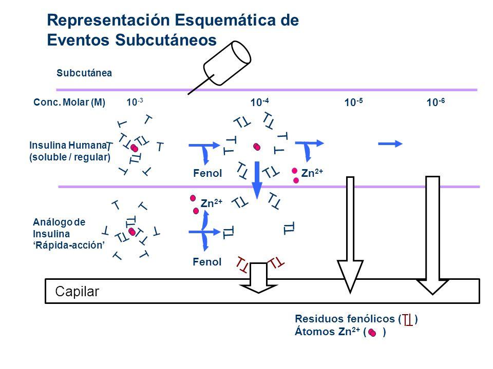Representación Esquemática de Eventos Subcutáneos Subcutánea 10 -6 Residuos fenólicos ( ) Átomos Zn 2+ ( ) T T 10 -4 Fenol T T T T T T T T T T 10 -5 Z