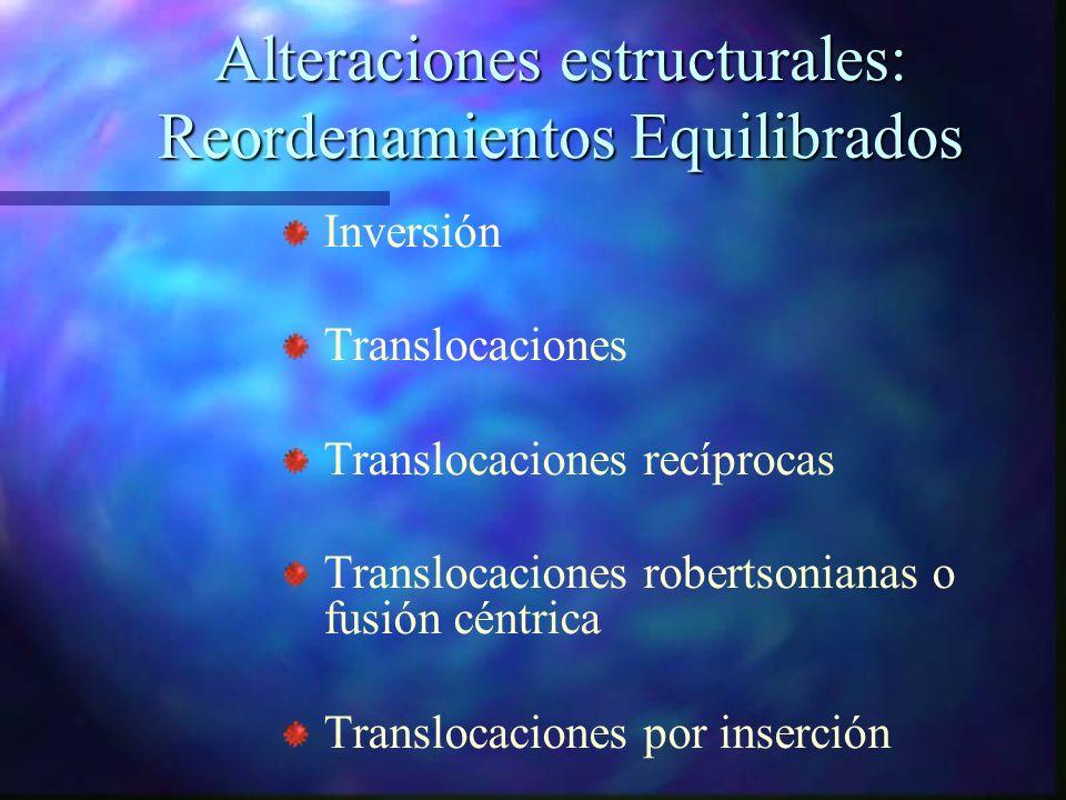 Alteraciones estructurales: Reordenamientos Equilibrados Inversión Translocaciones Translocaciones recíprocas Translocaciones robertsonianas o fusión