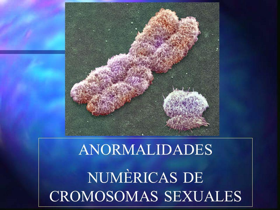 ANORMALIDADES NUMÈRICAS DE CROMOSOMAS SEXUALES