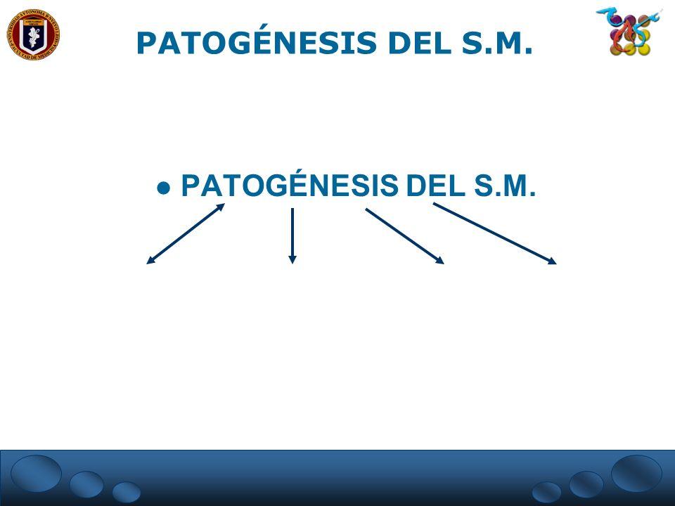 PATOGÉNESIS DEL S.M.