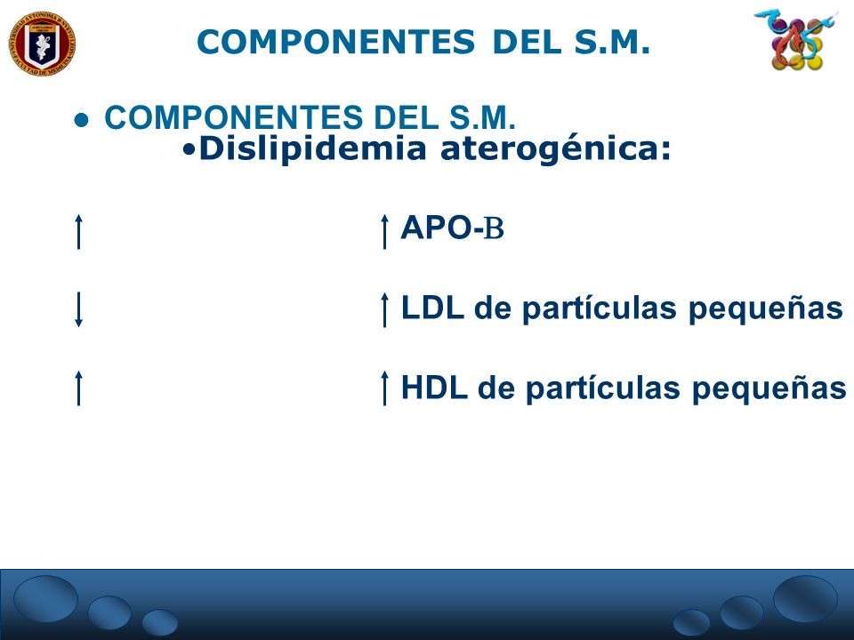 Dislipidemia aterogénica: APO- LDL de partículas pequeñas HDL de partículas pequeñas