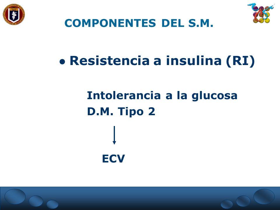 Resistencia a insulina (RI) Intolerancia a la glucosa D.M. Tipo 2 ECV COMPONENTES DEL S.M.