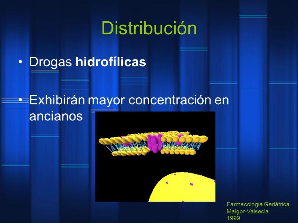 Distribución Drogas hidrofílicas Exhibirán mayor concentración en ancianos Farmacología Geriátrica Malgor-Valsecia 1999